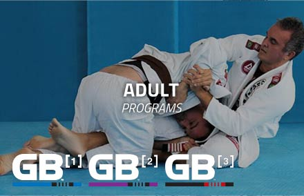 Gracie Barra Tokushima Adult Programs